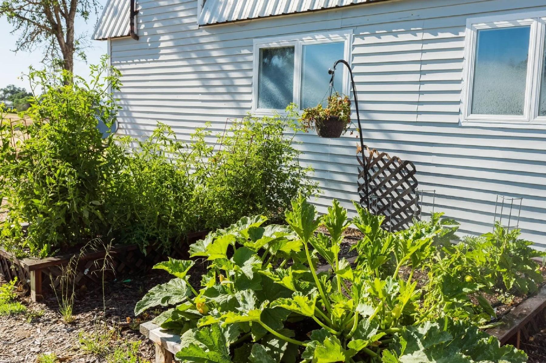 Rancho Da Hamilton - Property Garden